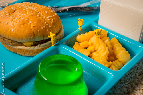 School Lunch Hazmat Health Inspection