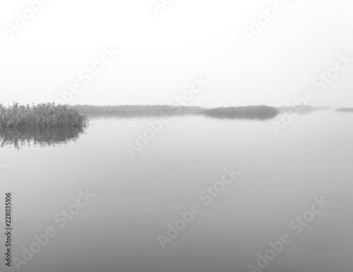 Valokuvatapetti marshland in the foggy lake tai