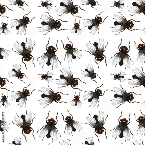 Seamless pattern of flys Wall mural