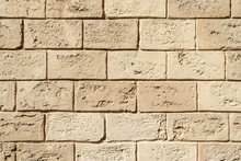 Texture Brickwork From Decorative Shellfish, Like Art Background