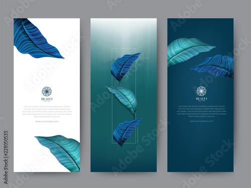 Fotografiet  Branding Packaging tropical plant leaf summer pattern background, for spa resort luxury hotel, logo banner voucher, fabric pattern, organic texture