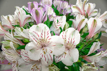 A Bouquet Of Flowers Lilac White Alstroemeria