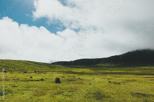 Fotobehang Landschap Grassland and the cloud.