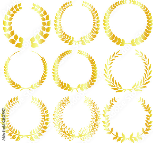 Round frame of gold laurel set Wallpaper Mural