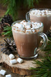 Cocoa with marshmallows in glass mugs on a wooden background