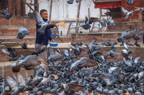 Kathmandu, Nepal - Circa May: A guy feeding flock of pigeons in the morning at Kathmandu Durbar Square