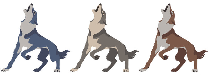 wolf howls, color vector illustration for your design.