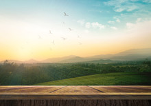 World Environment Day Concept:...