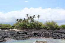 Hwaii Island Landscape