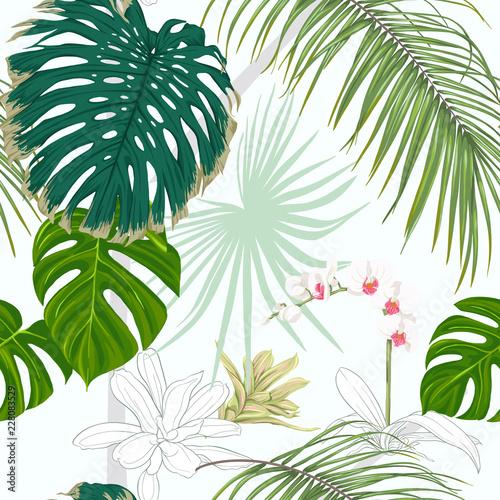 bezszwowy-wzor-tlo-z-roslinami-tropikalnymi-i-kwiatami