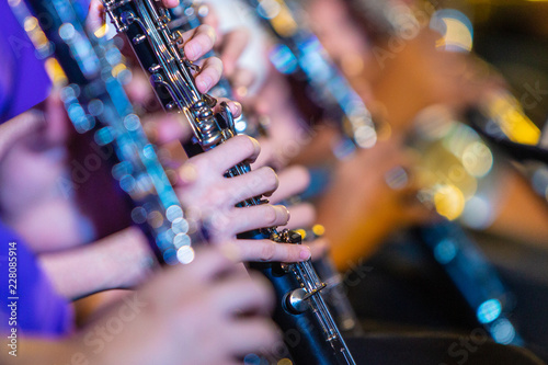 Female musician hands playing on clarinet - 228085914