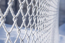 Metal Large Mesh Covered With Snow On A Sunny Frosty Day