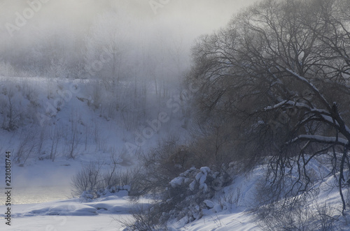 Printed kitchen splashbacks Forest river Fog over the river on a frosty morning and trees in the snow in winter