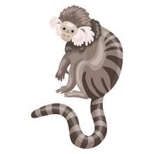 Striped Monkey Icon. Cartoon O...