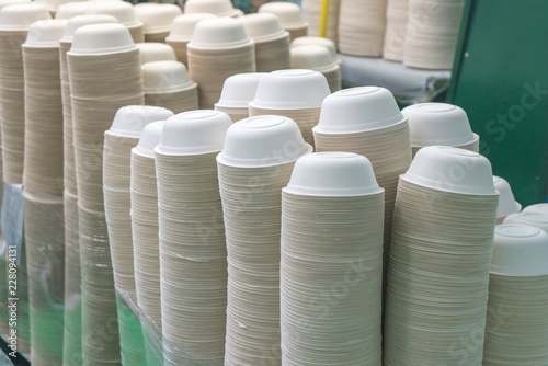 Group of bowl made from bagasse for container food in factory Canvas Print