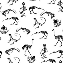 Black Skeletons Of Reptiles (crocodiles, Lizards, Frogs), Monkeys And Birds (ostriches And Herons) On White Background. Seamless Pattern.