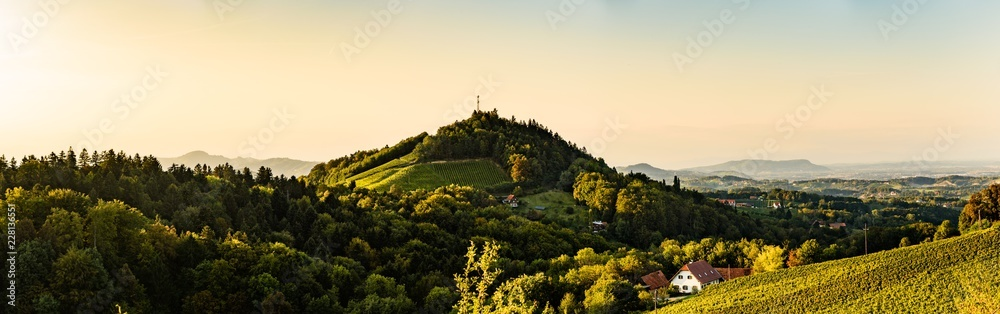 Fototapety, obrazy: Styria / Austria: Vineyards Sulztal Leibnitz area famous destination wine street area south Styria , wine country in summer. Tourist destination. Green hills and crops of grapes.