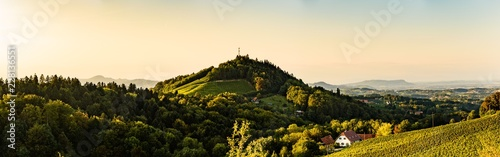 Canvas Prints Hill Styria / Austria: Vineyards Sulztal Leibnitz area famous destination wine street area south Styria , wine country in summer. Tourist destination. Green hills and crops of grapes.