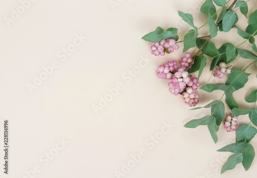 Foto op Canvas Bloemen Flowers composition. Frame made of various pink flowers and eucalyptus branches on pale beige background. Flat lay, top view, copy space