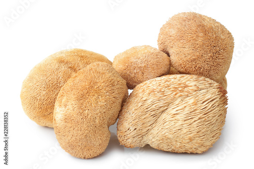 Dried Hericium Erinaceus