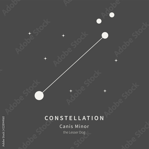 The Constellation Of Canis Minor. The Lesser Dog - linear icon. Vector illustration of the concept of astronomy.