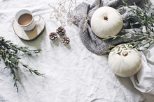 Autumn Styled Photo. Feminine ...