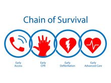 Survival Chain. Medical Clipart Isolated On White Background