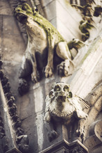 Low Angle View Of Gargoyles On Notre Dame Cathedral