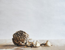 Close Up Dried Lotus Flower Or Waterlilly On Wooden Background