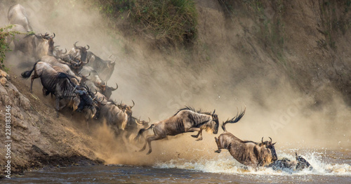 Fotobehang Antilope Wildebeests are crossing Mara river. Great Migration. Kenya. Tanzania. Maasai Mara National Park.