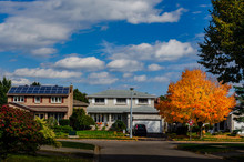 An Autumn Orange Maple Tree With Two Large Houses, One With Solar Panels