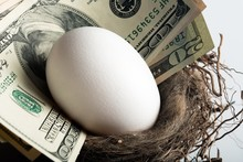 White Egg And Money In Nest Egg - Close Up