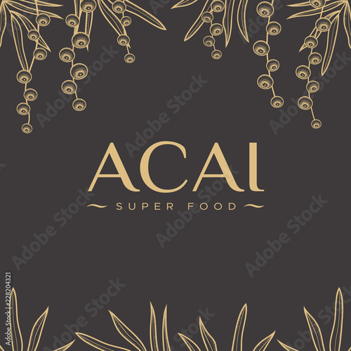 The design of the packaging template with palm leaves and acai berry Wallpaper Mural