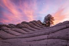 Sunset Landscape In The Desert...