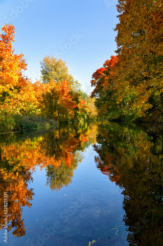 Foto op Canvas Bomen Bright autumn trees with their reflection in water. Vertical image