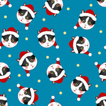 Black White Cat Santa Claus On Indigo Blue Background