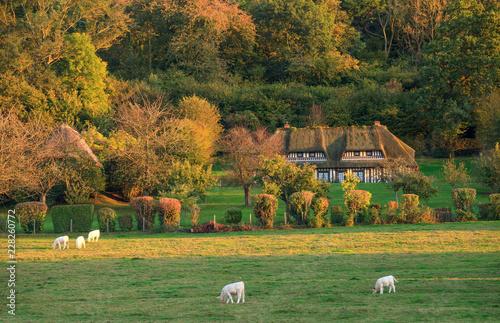 Canvastavla Chaumière dans le marais vernier en automne, Normandie