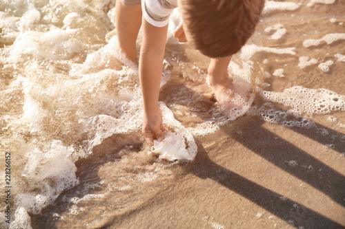 Fotografia, Obraz  Cute little boy gathering sea shells on beach