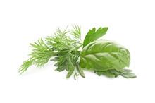 Fresh Aromatic Herbs On White Background