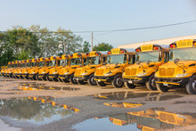 Yellow School Buses Lined Up In The Depot On The Weekend.USA.