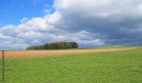 Foto op Canvas Pistache rural landscape with field and meadow and fluffy clouds, Czech Republic