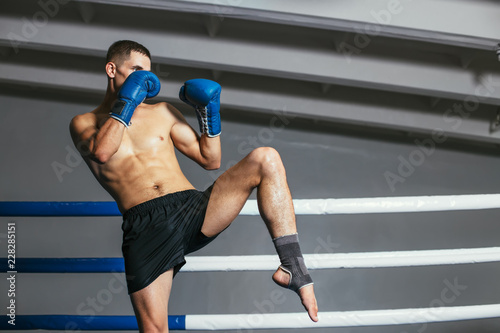Male boxer fighting in gloves in boxing ring