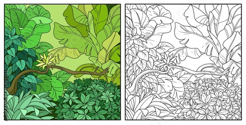 Jungle with big bush in the foreground color and black contour line drawing for Canvas Print