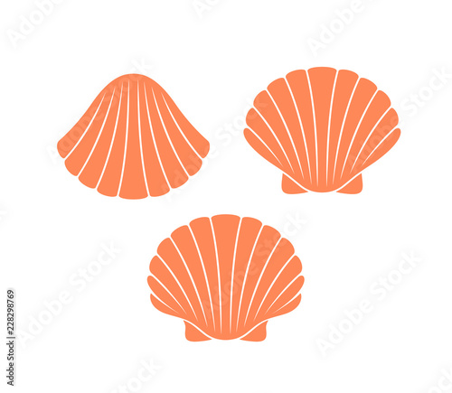 Fotomural Scallop logo. Isolated scallop  on white background
