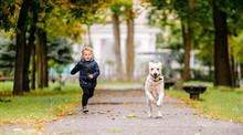 Little Boy Plays, Runs With Hi...