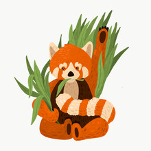 Illustration Of The Red Panda....
