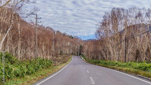 Foto op Aluminium Cappuccino 秋の志賀高原の風景