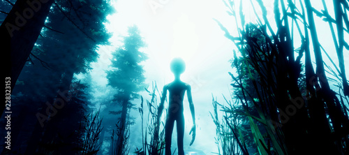 Photo sur Toile UFO Extremely detailed and realistic high resolution 3d illustration of a Grey Alien standing in a forest