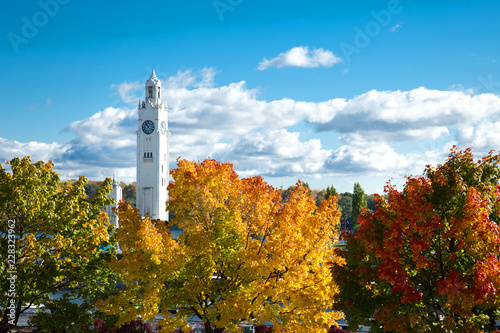 Foto op Canvas Centraal-Amerika Landen Colorful maple tree with clock tower in Montreal