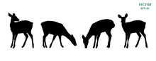 Vector Of Deers Silhouette Set, Isolated On White Background.